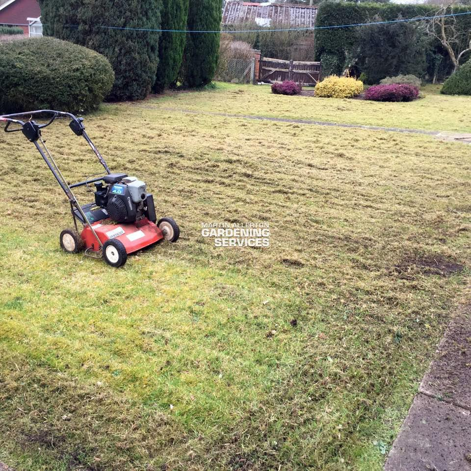 Mill Meece lawn scarifying