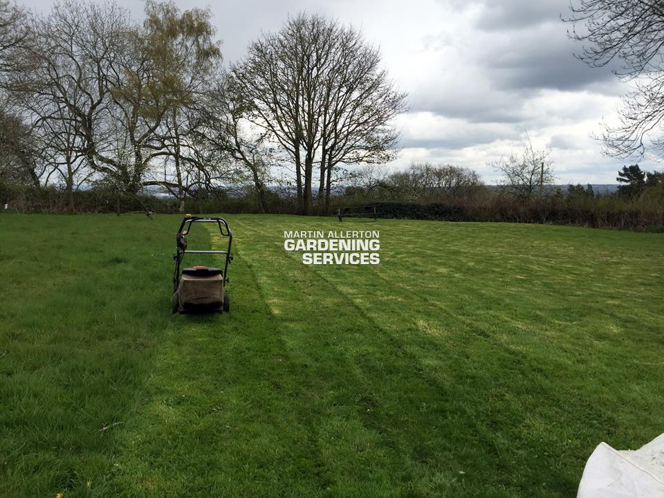Beech half acre lawn mow