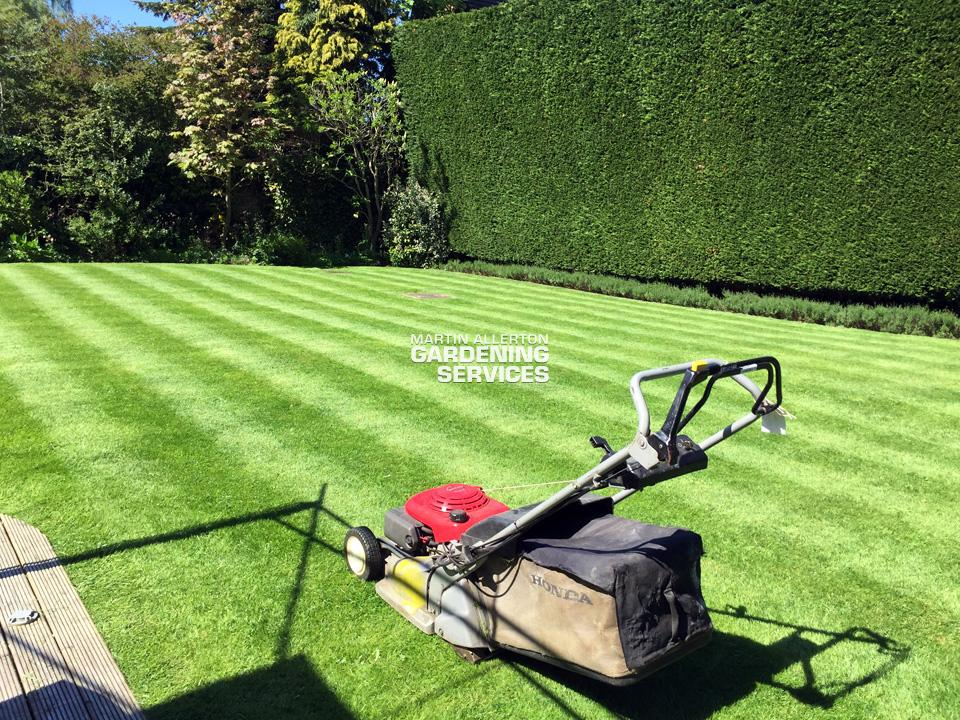 Aston lawn cut