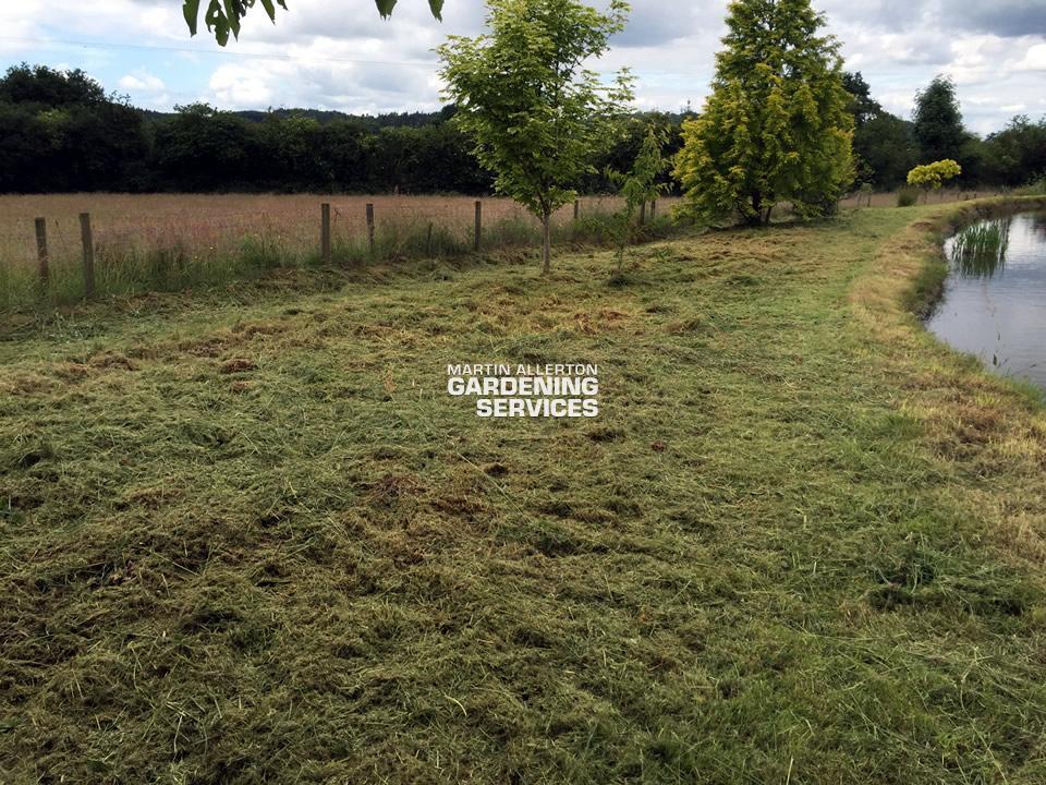 Tittensor strimming grass - after