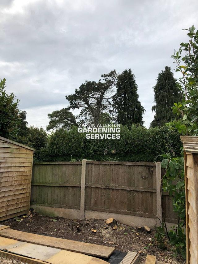 Yarnfield laurel hedge removal - after